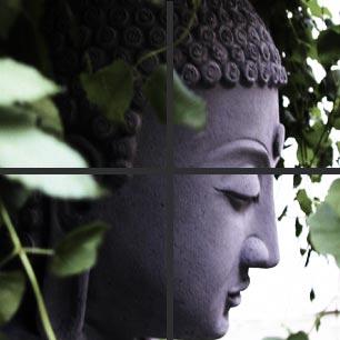 0-drs-buddha-1_264195316_std