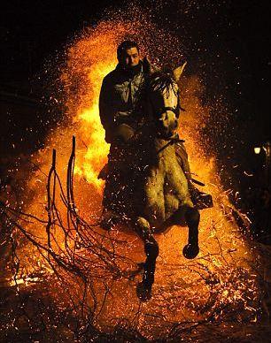horse-fire-jump1