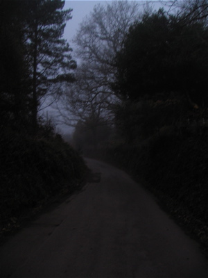 road-from-hilltop-bb-into-holne-at-dusk0